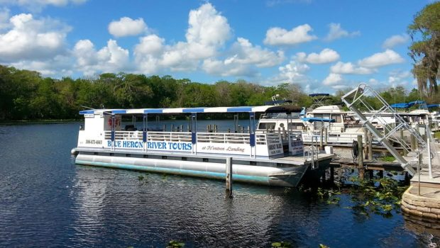 St John's River cruise